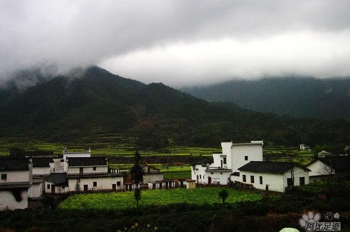 """建设""""中国美丽乡村""""---浙江省安吉县图片"""